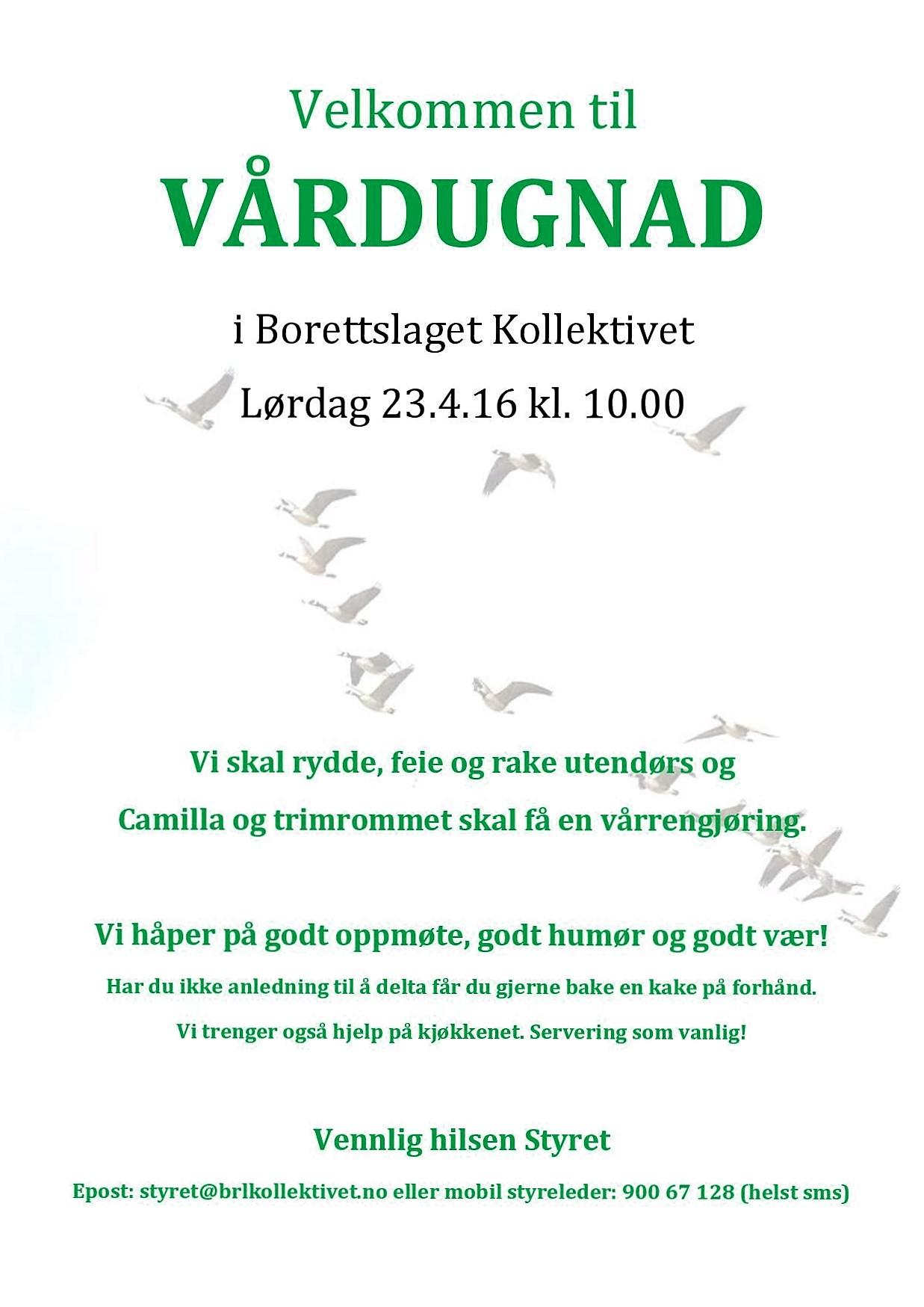 Plakat vårdugnad 2016